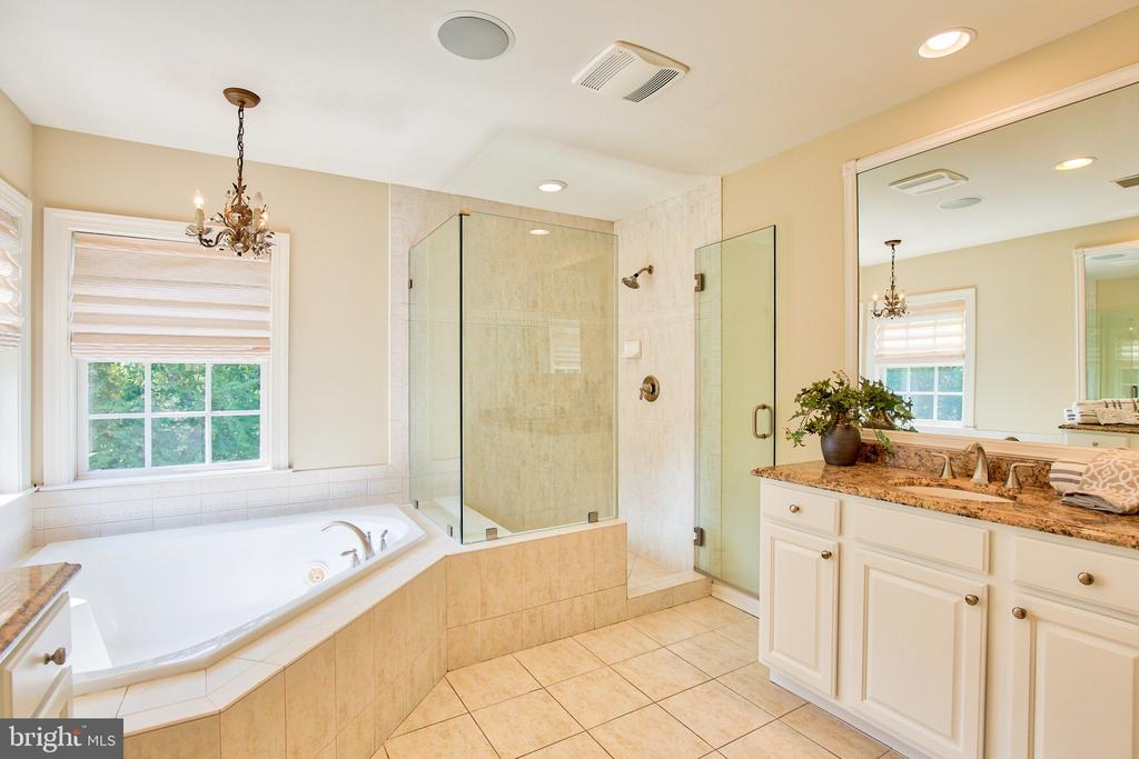 Master bath with frameless shower - 43535 FIRESTONE PL, LEESBURG