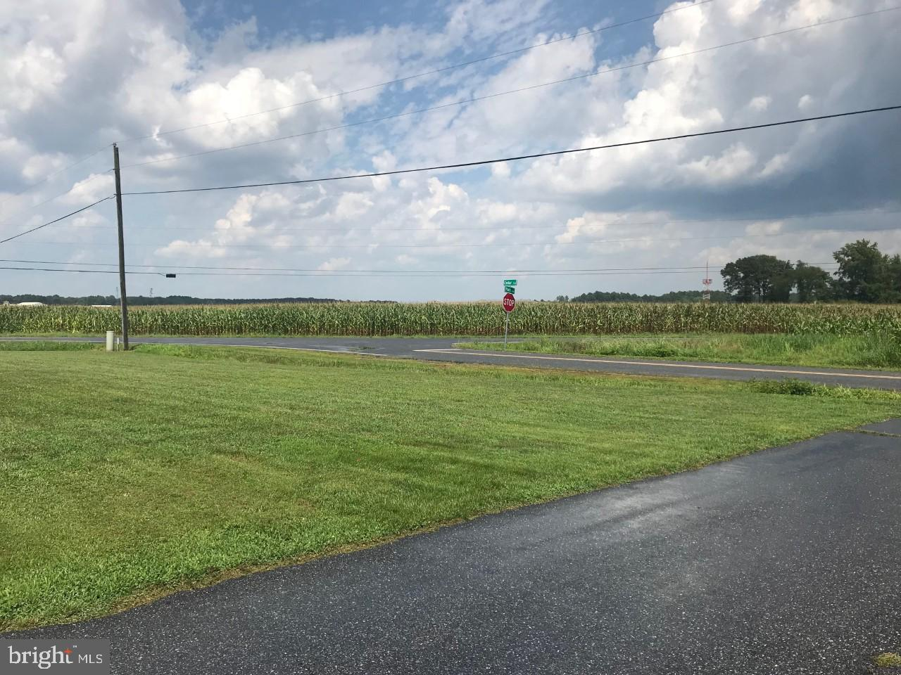 Additional photo for property listing at  Georgetown, Delaware 19947 United States