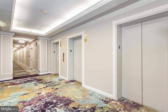 Beautiful Hallway to #920 - 19355 CYPRESS RIDGE TER #920, LEESBURG