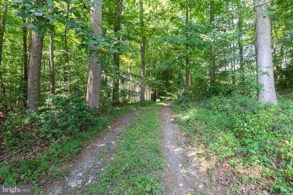 Private drive from the Carriage House - 12208 FAIRFAX STATION RD, FAIRFAX STATION