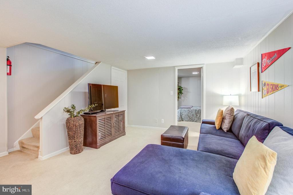 Comfy Lower Level - 4318 36TH ST S, ARLINGTON