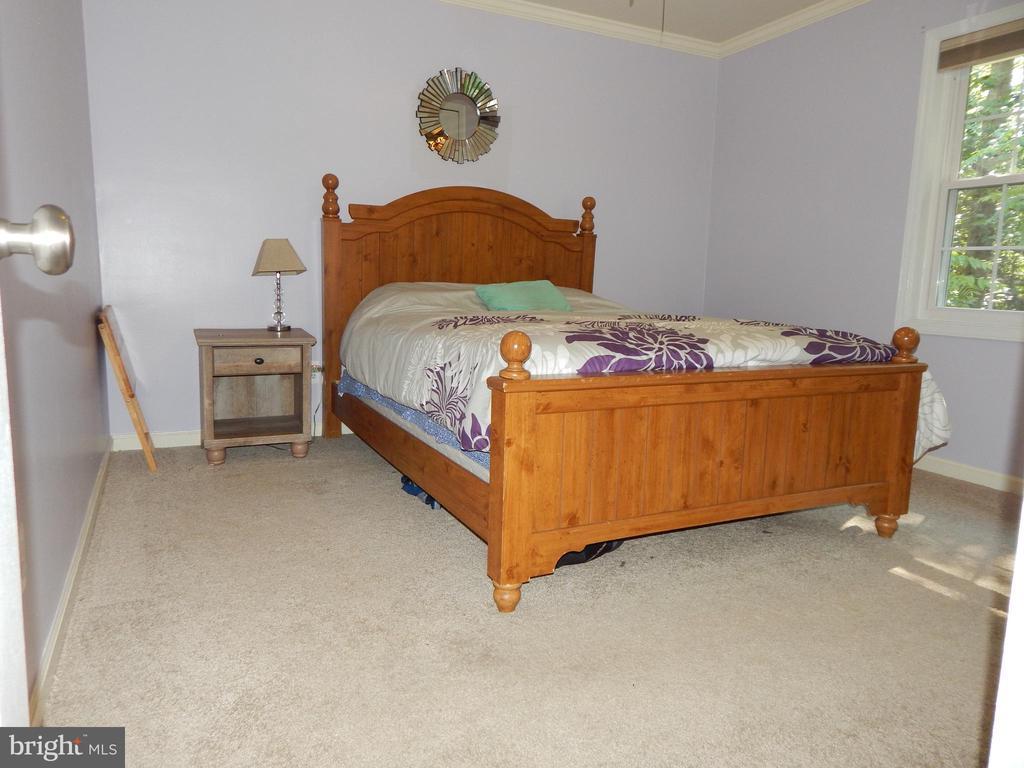 Master Bedroom view - 6200 MASSAPONAX DR, FREDERICKSBURG