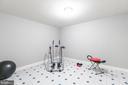 Fitness room - 13807 LAUREL ROCK CT, CLIFTON