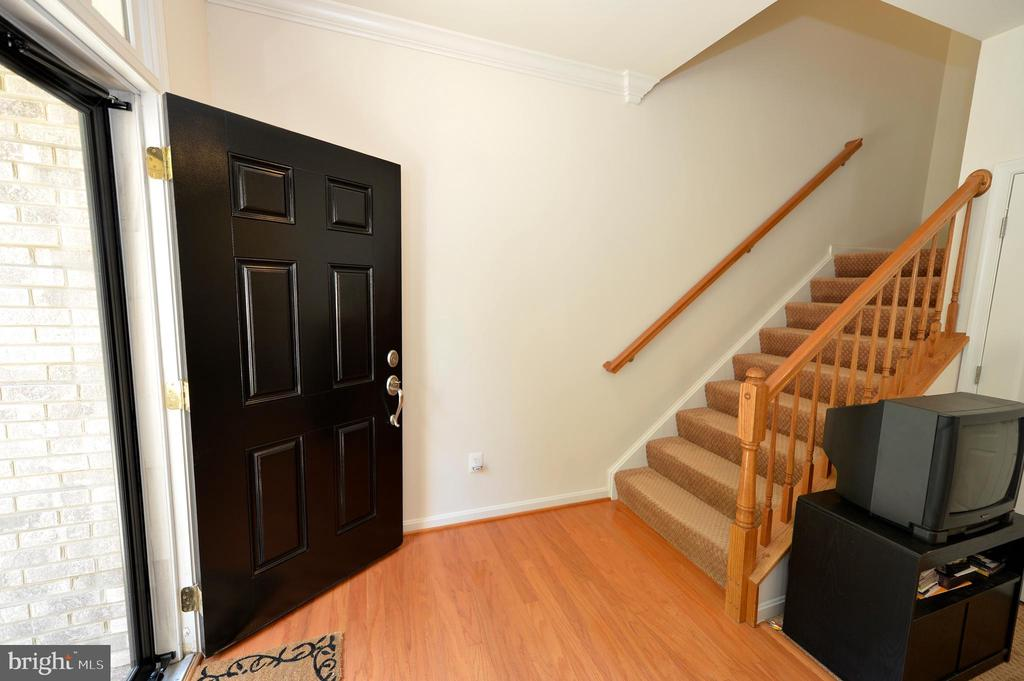 Entrance level door - 19342 GARDNER VIEW SQ, LEESBURG