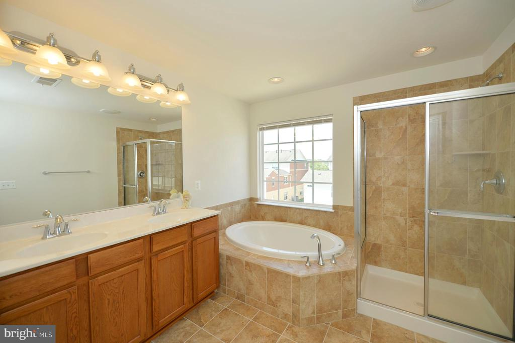 Master bath with shower and soaking tub - 19342 GARDNER VIEW SQ, LEESBURG