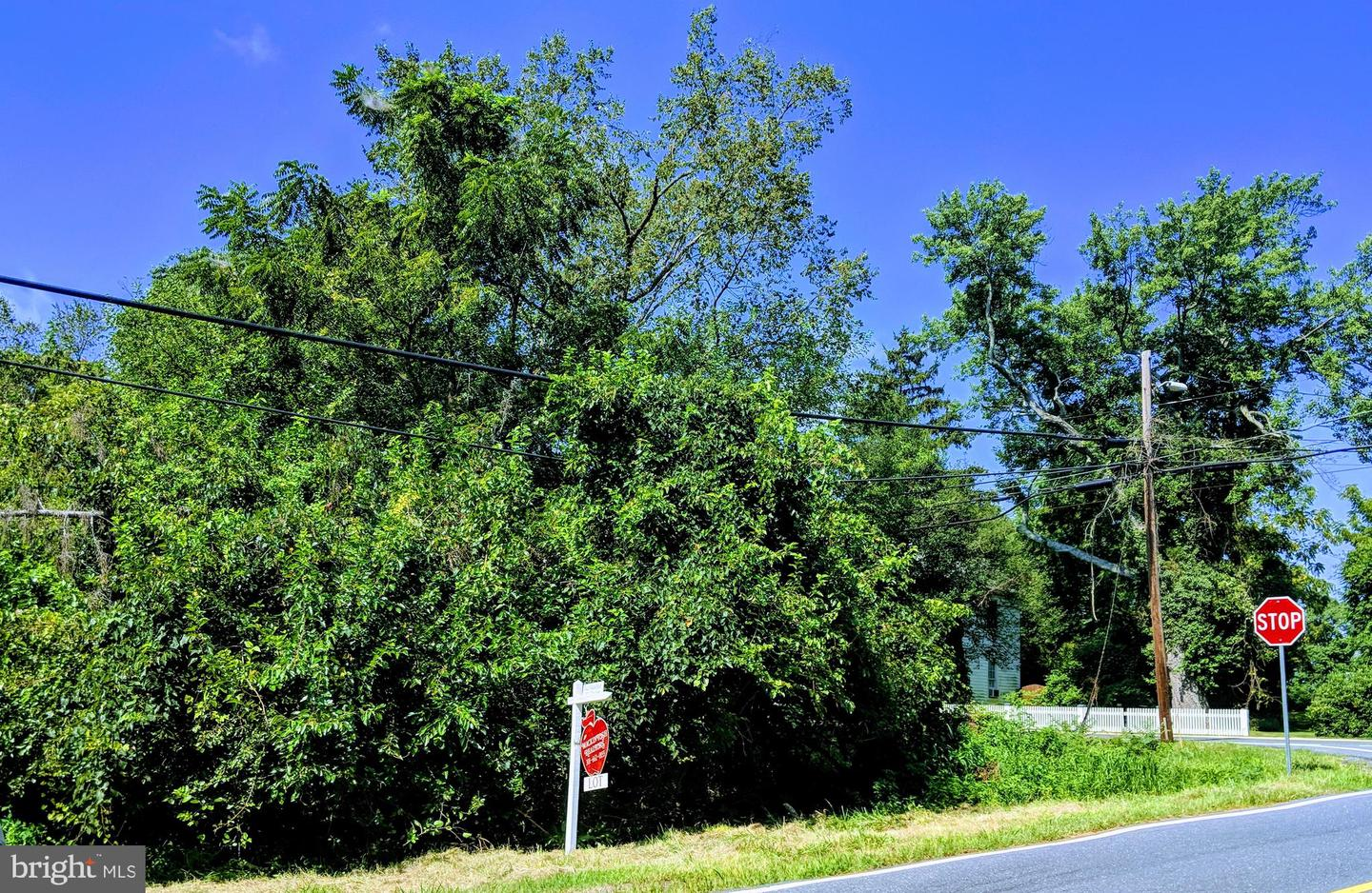 Land for Sale at Dickerson, Maryland 20842 United States