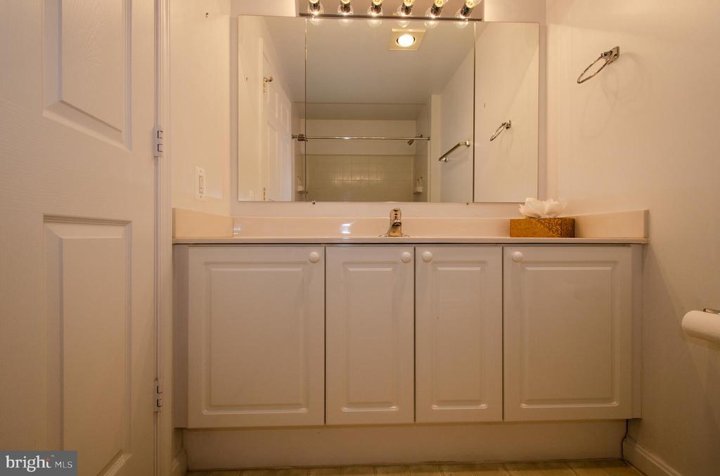 Hall bathroom - 19355 CYPRESS RIDGE TER #823, LEESBURG