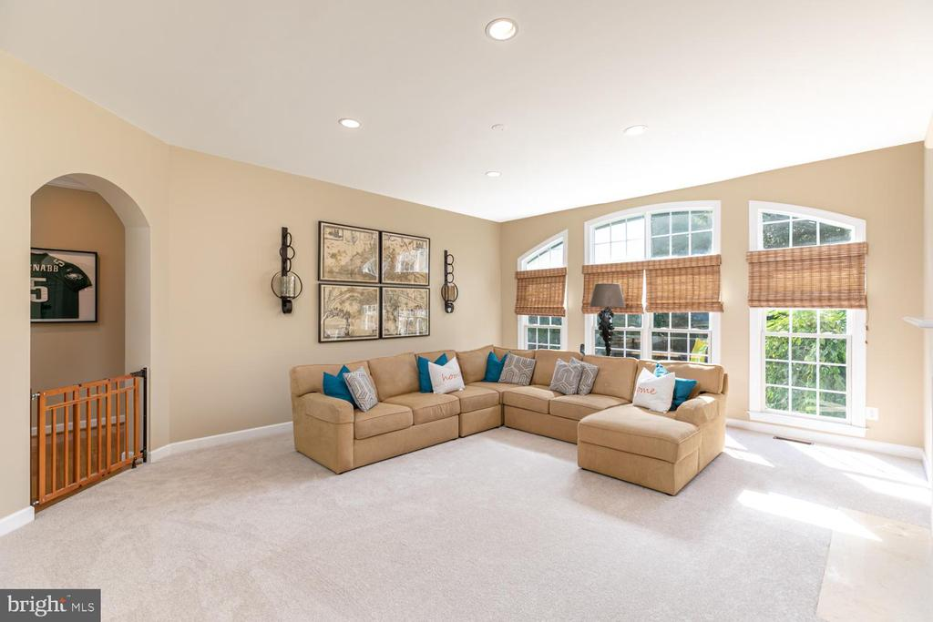 Family Room - 18700 RIVERLOOK CT, LEESBURG
