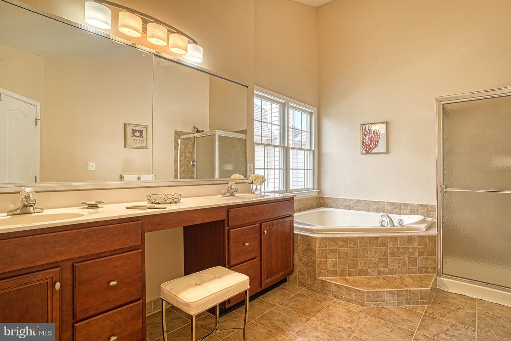 Double sink, soaking tub and a shower what else? - 25238 CROSSFIELD DR, CHANTILLY