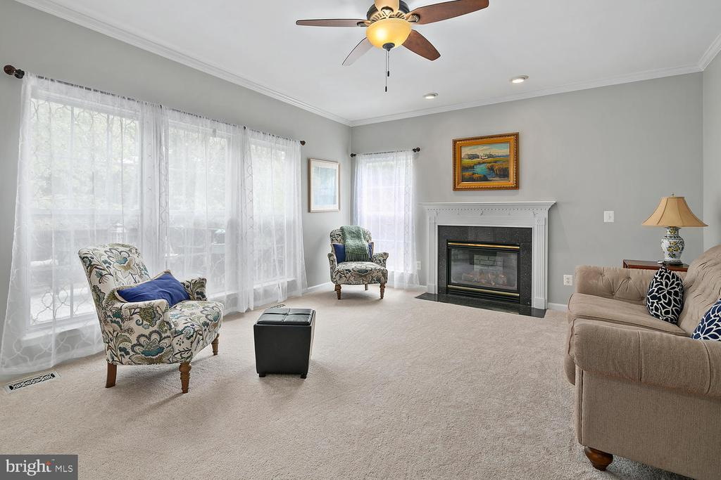 Family Room - 21332 MARSH CREEK DR, BROADLANDS