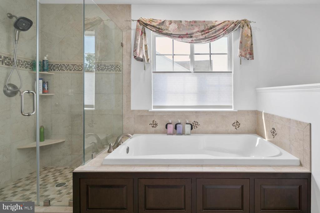 Master Bathroom sun filled and bright - 21332 MARSH CREEK DR, BROADLANDS