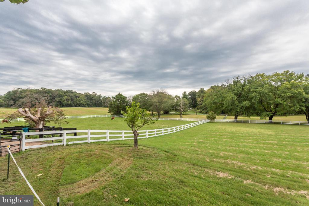 Fully Fenced Property - 6401 STALLION RD, CLIFTON