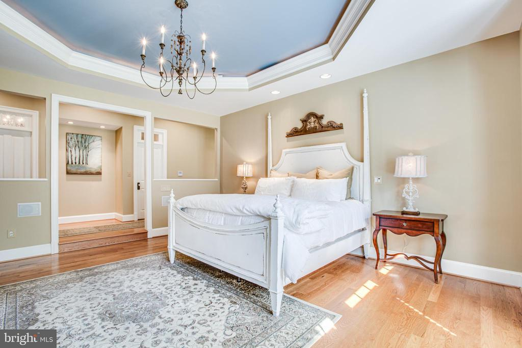 Tray ceilings and custom lighting! - 11305 HONOR BRIDGE FARM CT, SPOTSYLVANIA