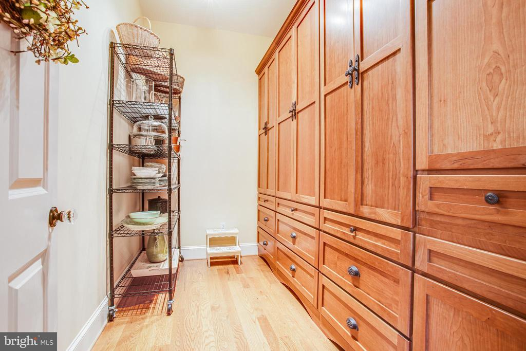 Walk-in custom pantry! - 11305 HONOR BRIDGE FARM CT, SPOTSYLVANIA