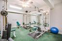 Basement gym - 11305 HONOR BRIDGE FARM CT, SPOTSYLVANIA