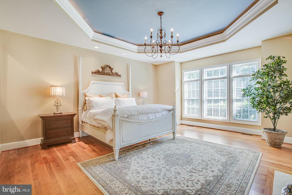 Main level master suite - 11305 HONOR BRIDGE FARM CT, SPOTSYLVANIA