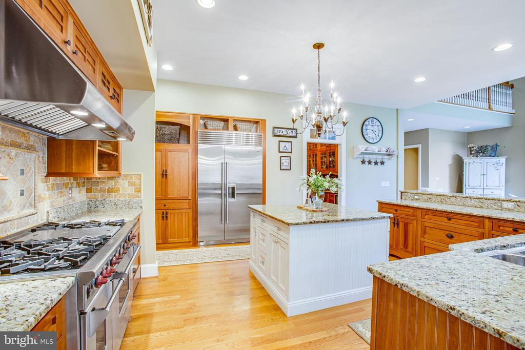 Custom back splash & luxury appliances! - 11305 HONOR BRIDGE FARM CT, SPOTSYLVANIA