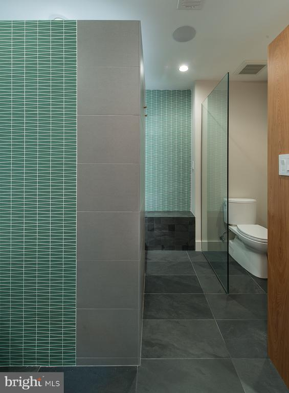 Owner's spa with European style shower - 4611 36TH ST N, ARLINGTON