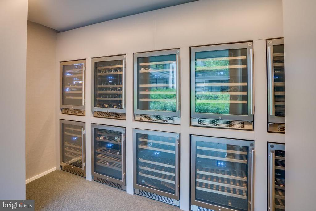 Personal Wine/Beverage Storage - 925 H ST NW #802, WASHINGTON