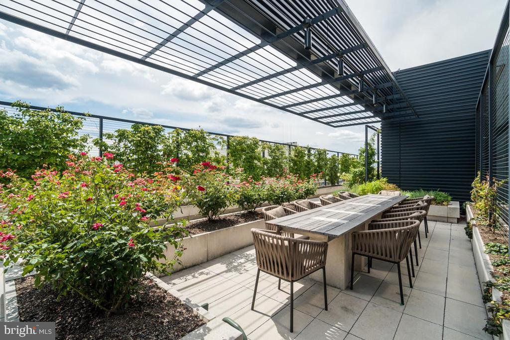 RoofTop Entertaining Area - 925 H ST NW #802, WASHINGTON