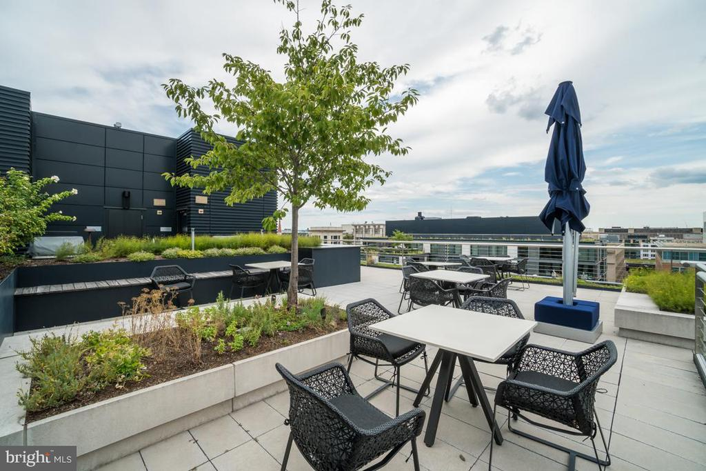 RoofTop - 925 H ST NW #802, WASHINGTON