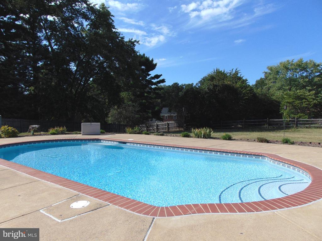 Grecian in-ground, durable, filtered, gunite pool - 701 SPRING VALLEY DR, FREDERICKSBURG
