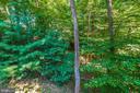 Look at the views! - 9708 WOODLAKE PL, NEW MARKET