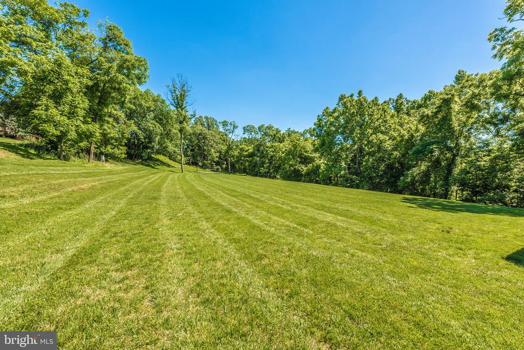 Soccer field and basketball hoop, 2 blocks away - 9708 WOODLAKE PL, NEW MARKET
