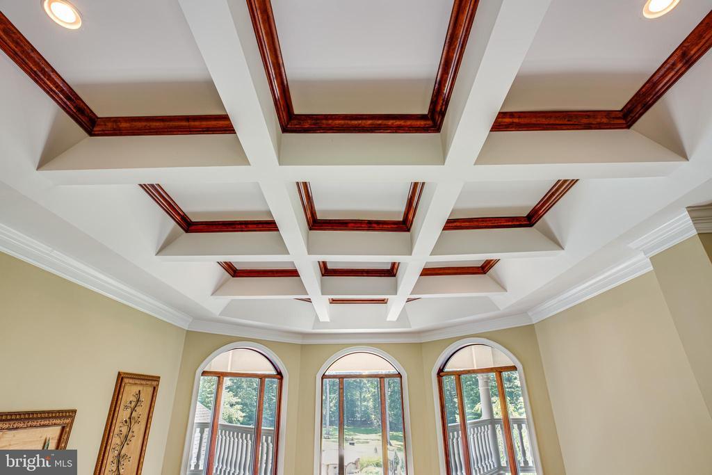 Palladium Windows & Coffered Ceiling - 9 WINNING COLORS RD, STAFFORD