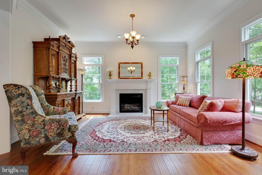 Living Room - 3003 WEBER PL, OAKTON