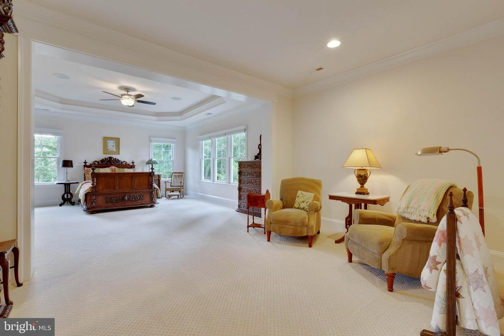 Master Entryway with Sitting Room - 3003 WEBER PL, OAKTON