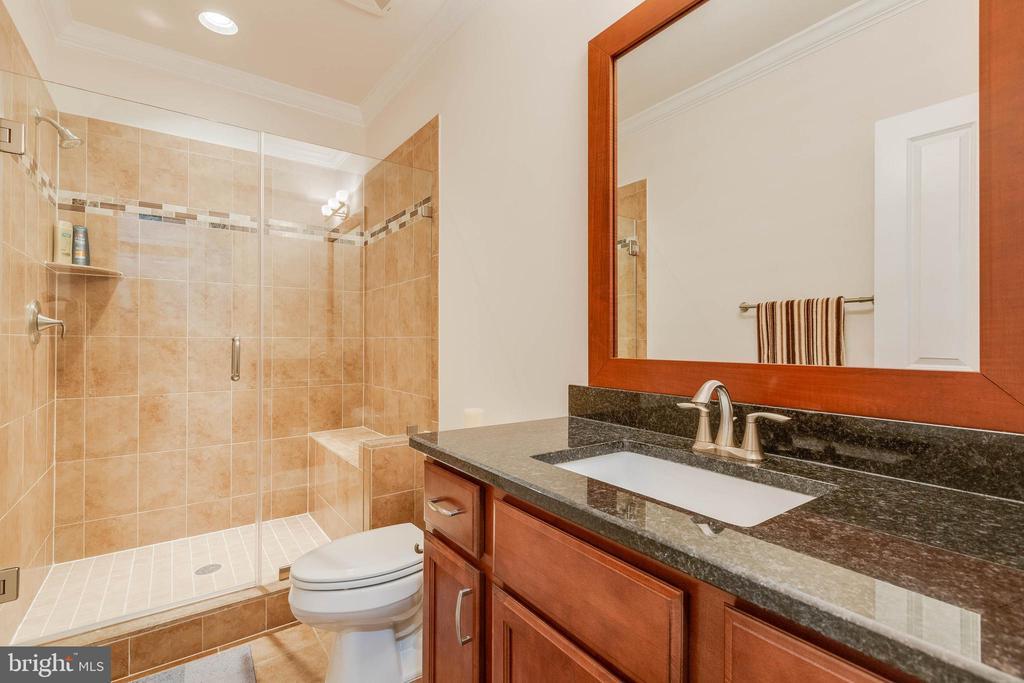 Basement Bedroom 5 Private Bathroom - 3003 WEBER PL, OAKTON