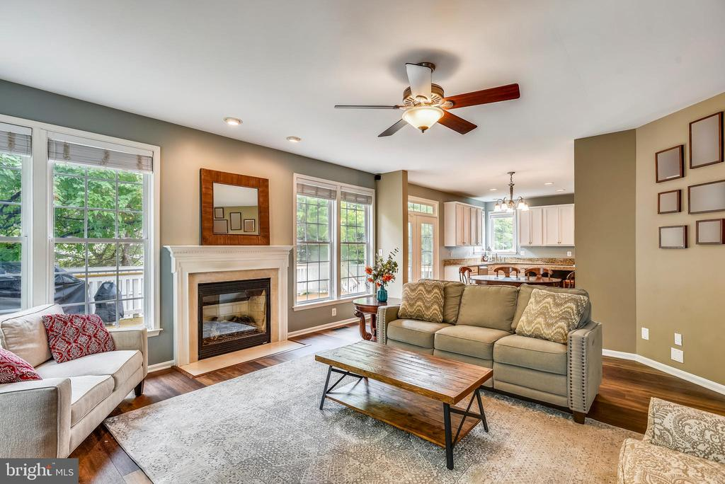 Family Room with Gas Fireplace - 21536 INMAN PARK PL, ASHBURN