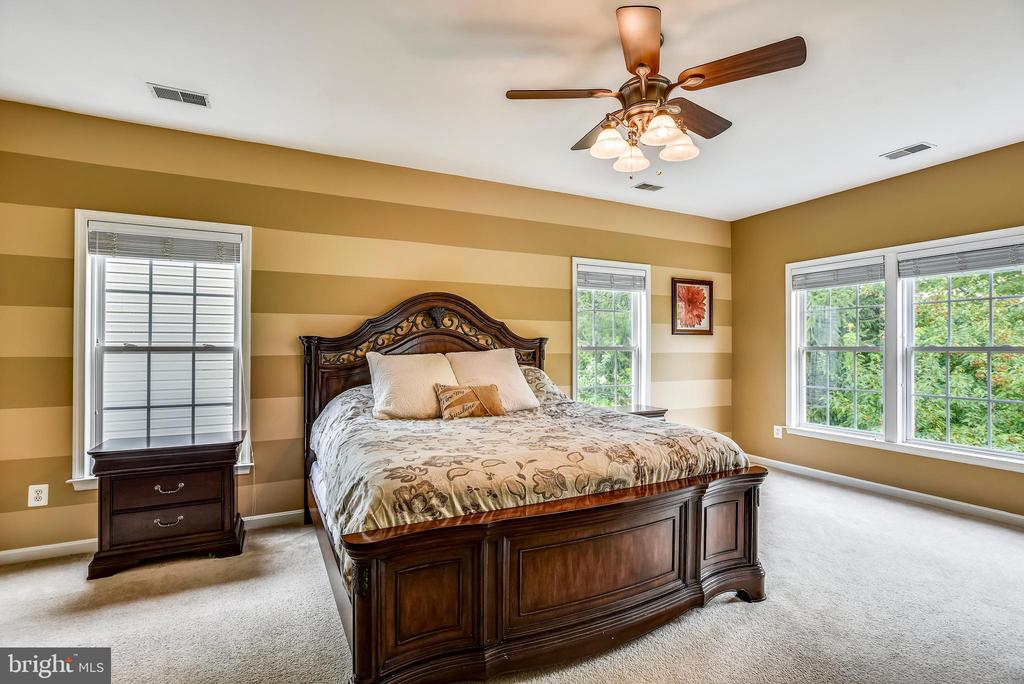 Master Bedroom - 21536 INMAN PARK PL, ASHBURN