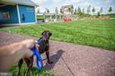 Community Dog Park. Photo Credit: EmbreyMill.com - 203 APRICOT ST, STAFFORD