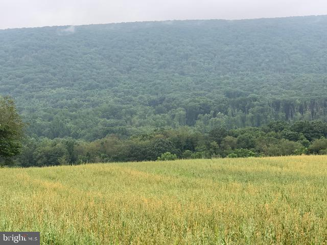 Land for Sale at Ashland, Pennsylvania 17921 United States