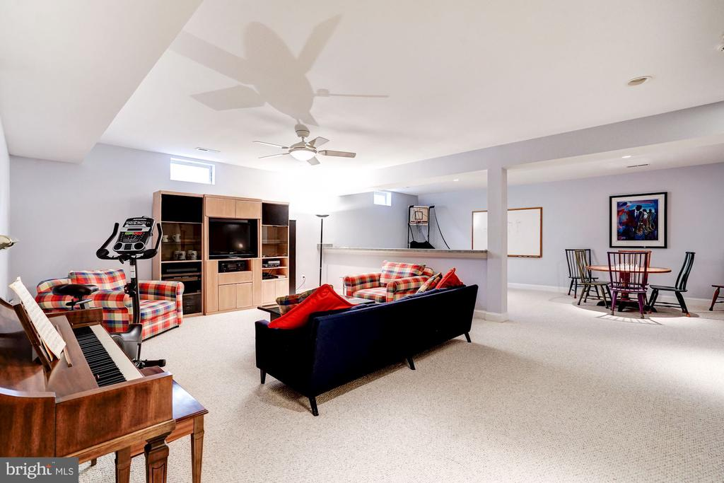 Rec Room to Game Room - 107 HILLIER ST, FALLS CHURCH