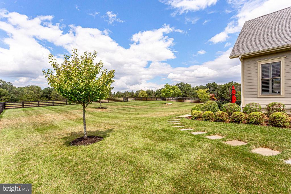 Fenced rear yard backing to trees - 23039 WELBOURNE WALK CT, ASHBURN