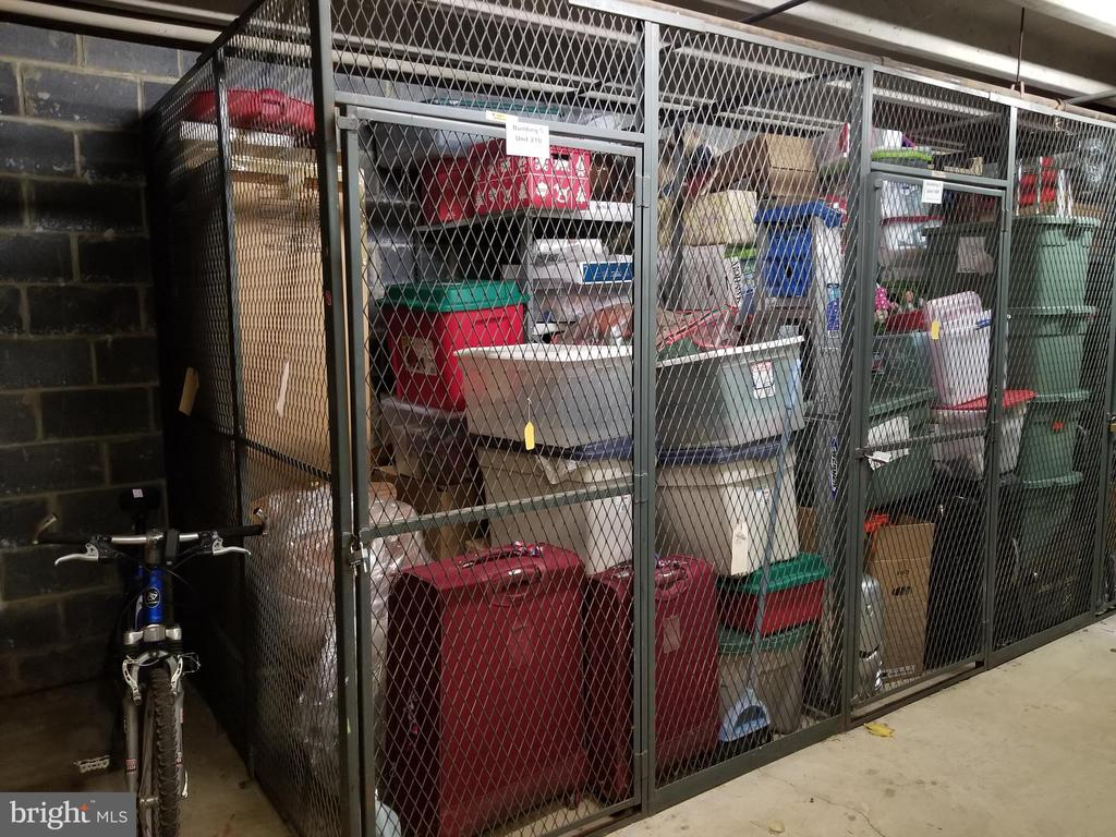 Storage, Lower Level - Look How Much You Can Fit! - 10300 BUSHMAN DR #210, OAKTON