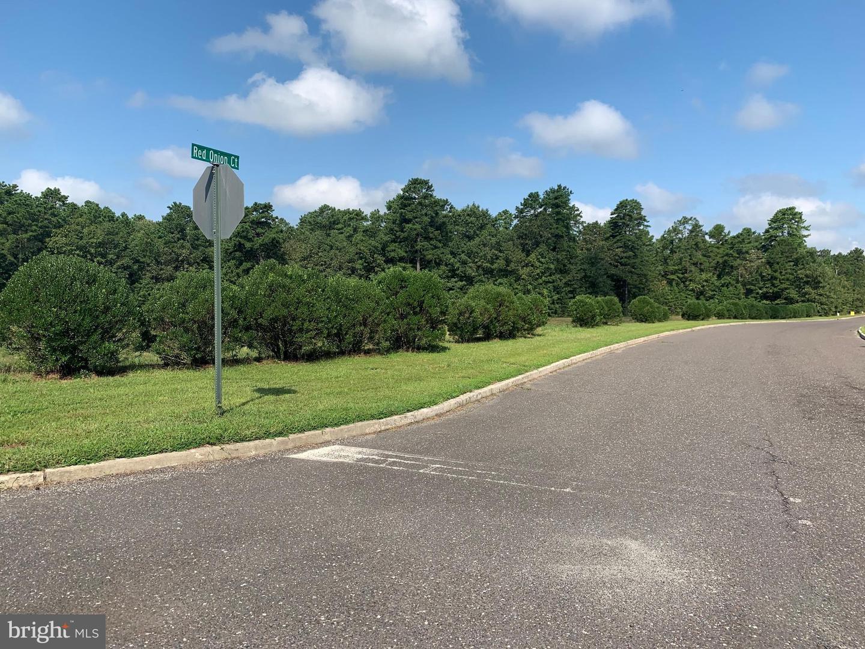土地,用地 为 销售 在 Shamong, 新泽西州 08088 美国