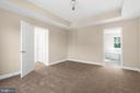 Master Bedroom with tray ceilings - 173 WHITE OAK ROAD, FREDERICKSBURG