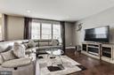 Living room - 16684 DANRIDGE MANOR DR, WOODBRIDGE