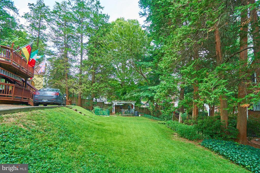Large Backyard - 1901 N GLEBE RD, ARLINGTON