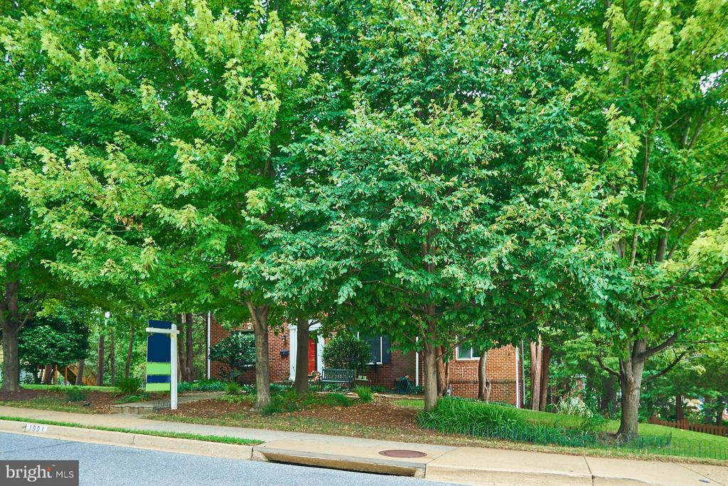 Beautiful Trees and Landscaping provide privacy - 1901 N GLEBE RD, ARLINGTON