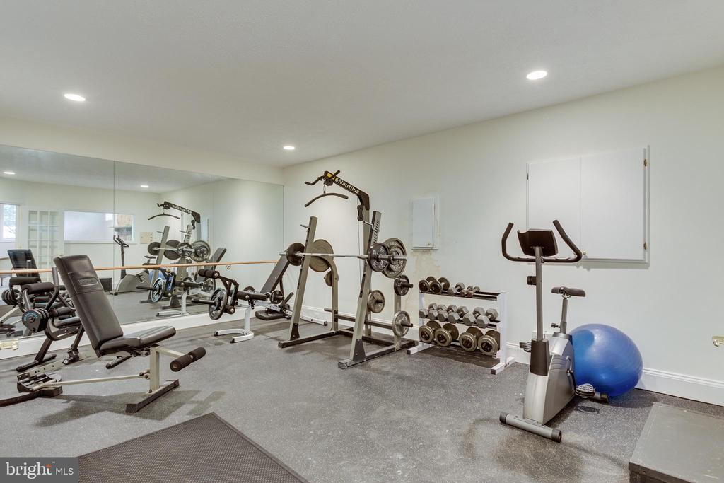 Exercise Room - 9602 SYMPHONY MEADOW LN, VIENNA