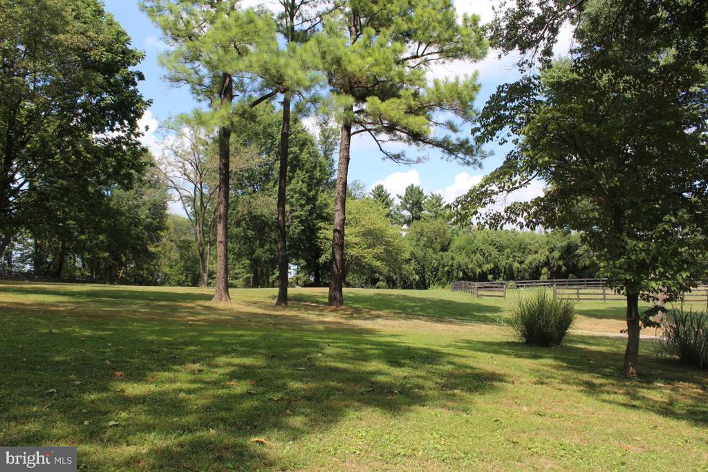 View - 22156 POT HOUSE RD, MIDDLEBURG
