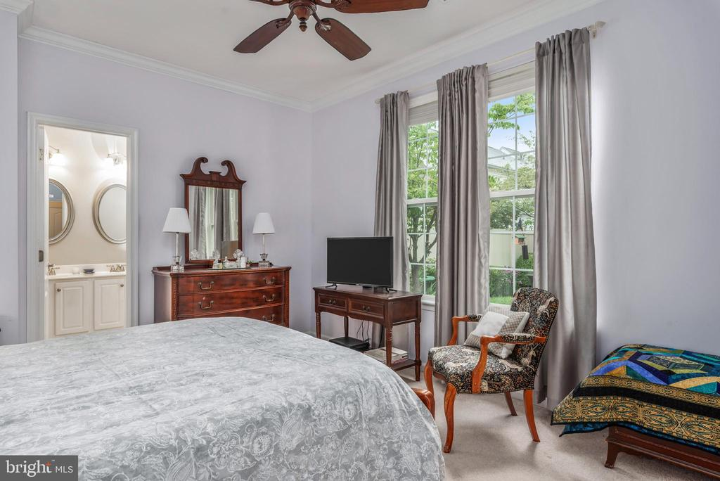 Master Bedroom with great view of patio - 43718 MIDDLEBROOK TER, ASHBURN
