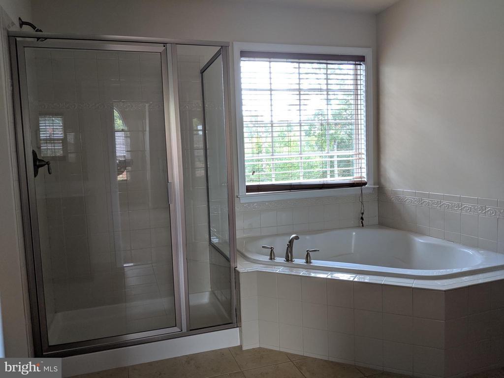 Masterbath w/ Tub & Shower - 3985 WHIPS RUN DR, WOODBRIDGE