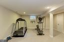 Lower level exercise room adjacent to full bath - 14608 CROSSWAY RD, ROCKVILLE