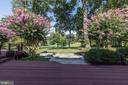 Gorgeous landscaping with uplighting - 14608 CROSSWAY RD, ROCKVILLE